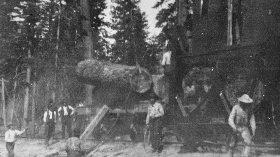 Crane Loading Logs onto Train