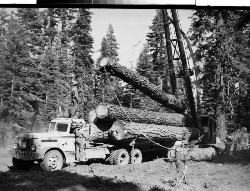 1946 Taylor & Carver Logging