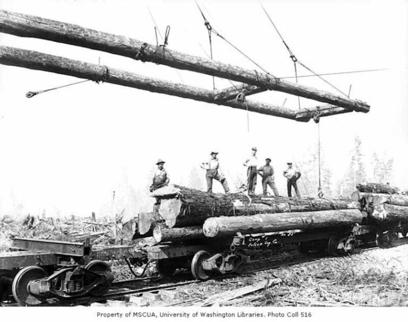 Crew at loading site with logs on railroad skeleton car, camp 1, Polson Logging Company, near Hoquiam.