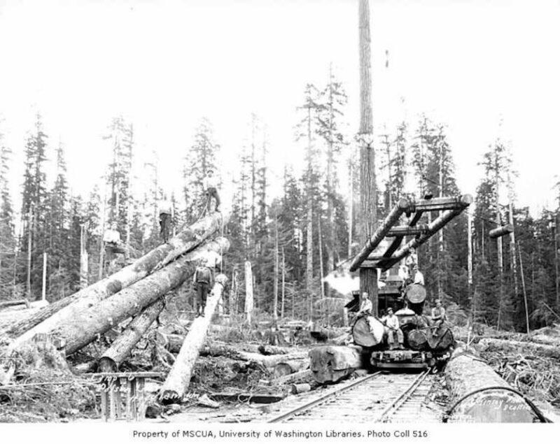 Polson Logging Company, near Hoquiam.