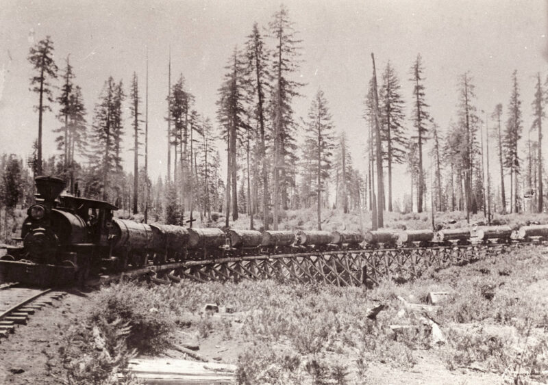 Logging Train on Trestle