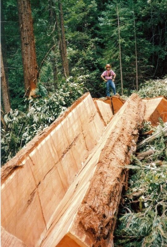 Splitting logs.