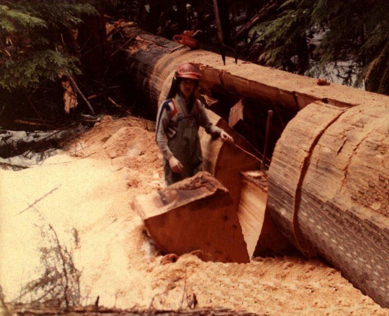 Cutting out a big log.