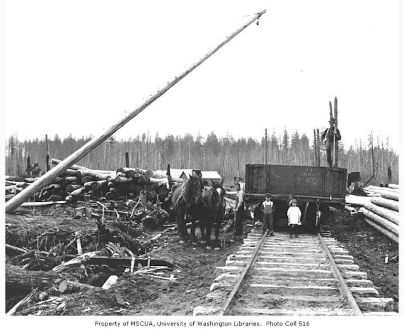 Children and loading crew with gondola railroad car, horse team, and logs to be loaded, Nelson and Company.