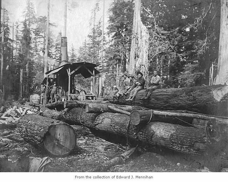 1902 (possibly 1907, but H and B had moved to Chimacum in 1906), Landing in the woods on side of track, Gettysburg, Wash.