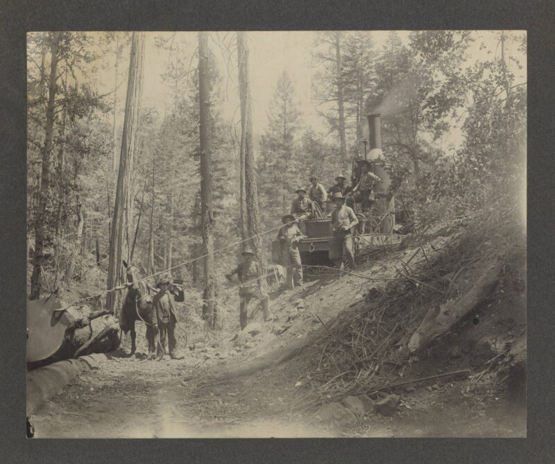 1903 Logging with a donkey engine.