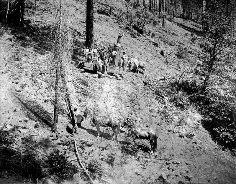 1902 Sierra Lumber Company.