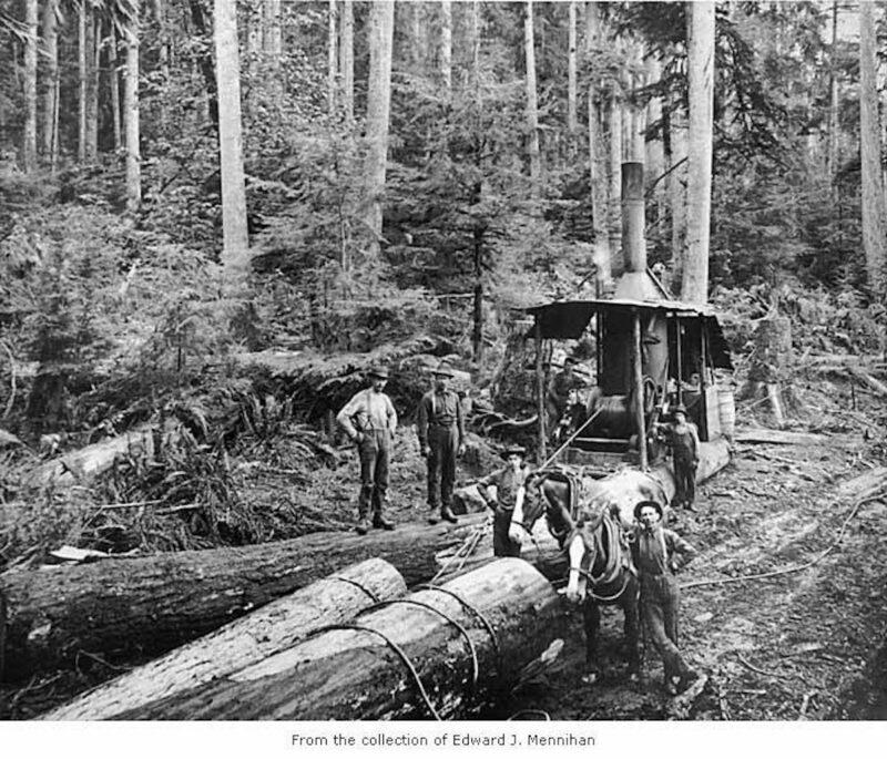 1905 Hall and Bishop Logging Company.