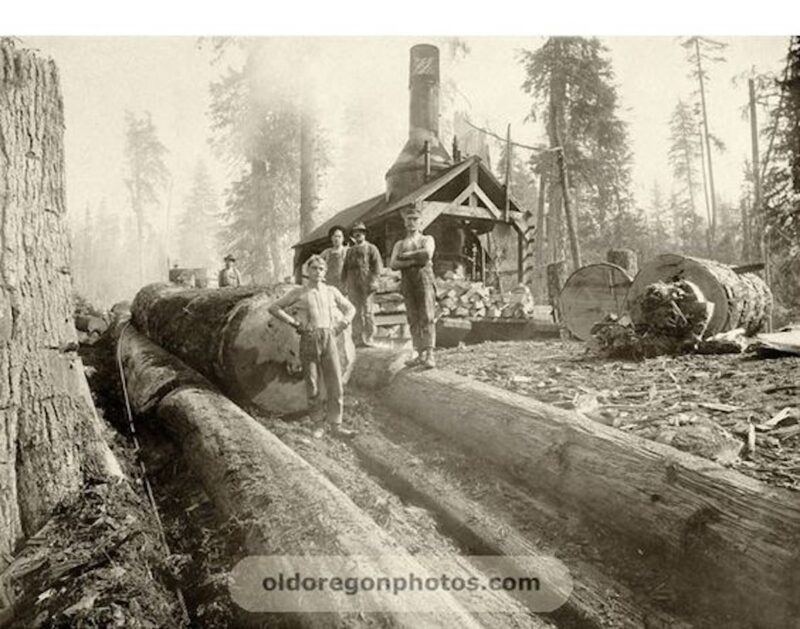 1905 A young logger in a log chute.