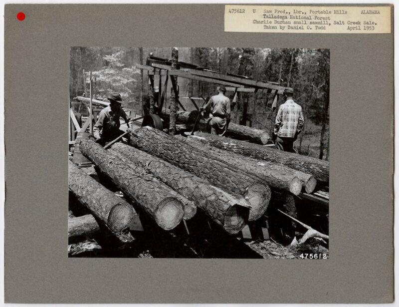 1953 Charlie Durham small sawmill, Salt Creek, Alabama