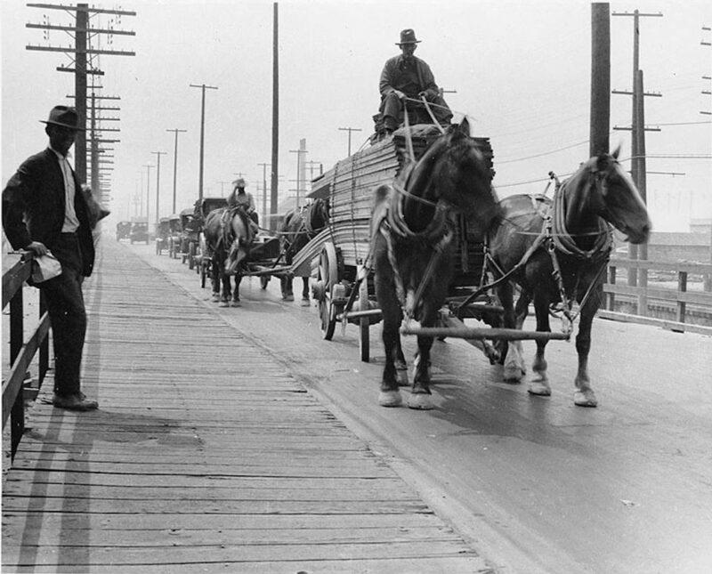 1918 Horse drawn lumber wagons.
