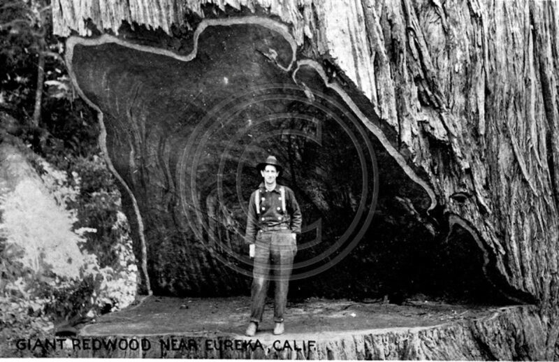 A man standing in a massive hinge cut.
