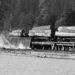 "1932 Green Point Logging Co. Ltd. ""Shay"" locomotive working at log dump."