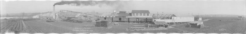 1919 Sawmill and Factory of Lumber Products Limited. New Westminster B.C. Drilled rows in the land indicate farm land on the right side of the photo.