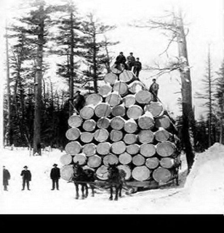 Log load No. 26.