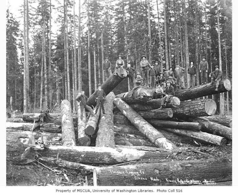 1916 Florence Logging Company.