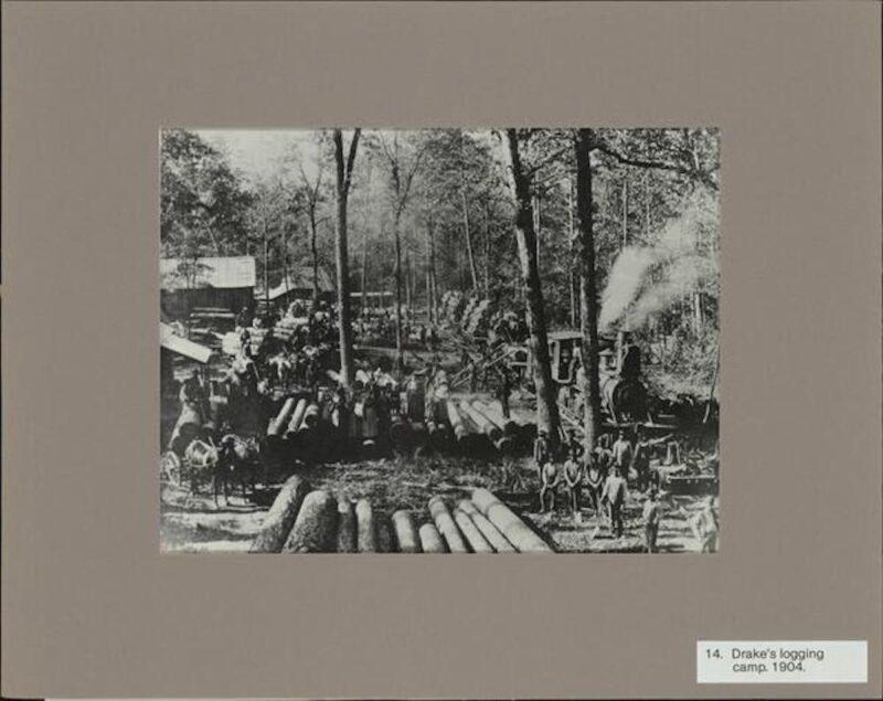 1904 Drake's Logging Camp, Louisiana.