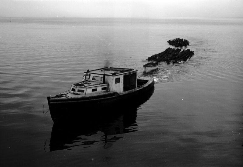 1950 Boat towing logs, Digby Nova Scotia.