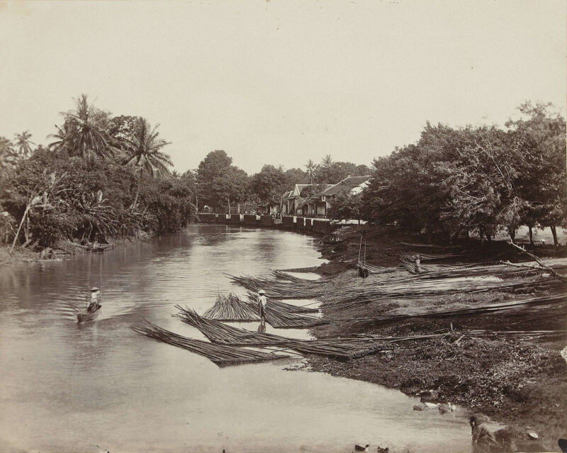 1870s Log transport in the Dutch East Indies (now Indonesia)