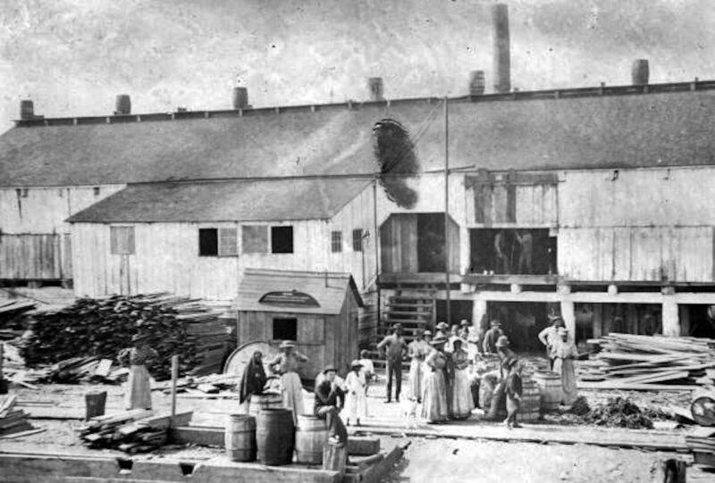 1895 Coombs Lumber Company - Water Street, Apalachicola, Florida.